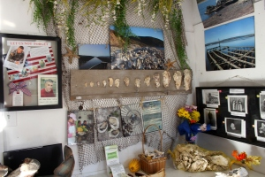 Drakes Bay Oyster Company