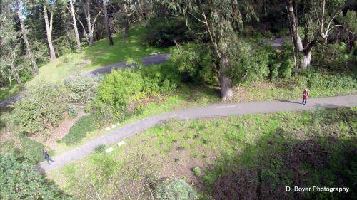 Aerial shot North Lake Golden Gate Park