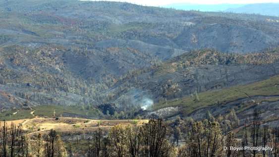 Rocky Fire and Jerusalem Fire burn area